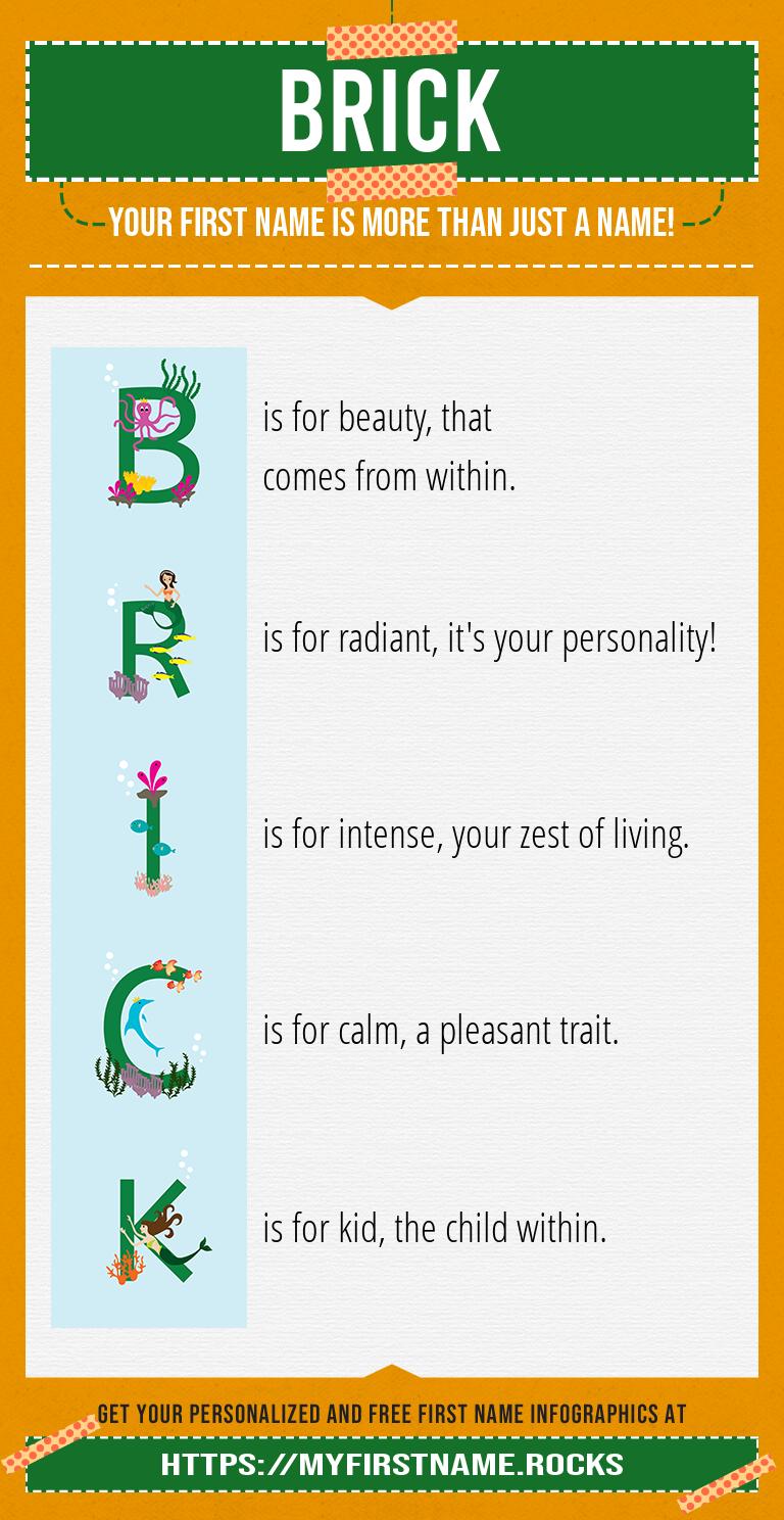 Brick Infographics