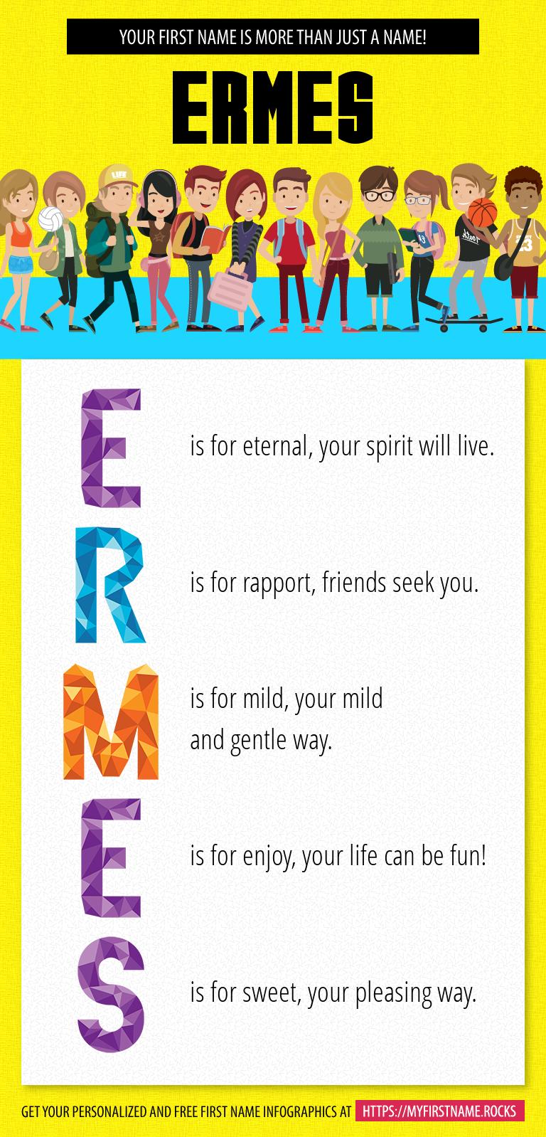 Ermes Infographics