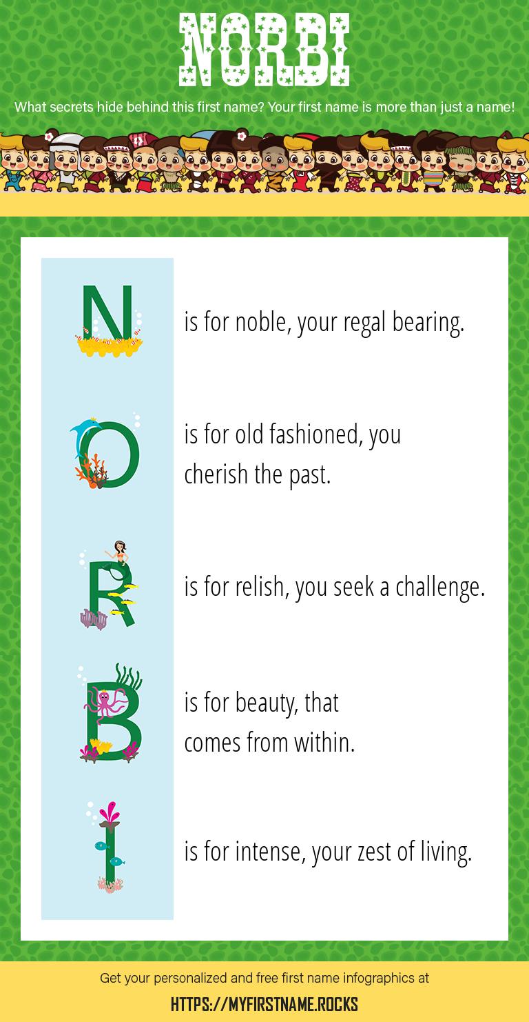 Norbi Infographics
