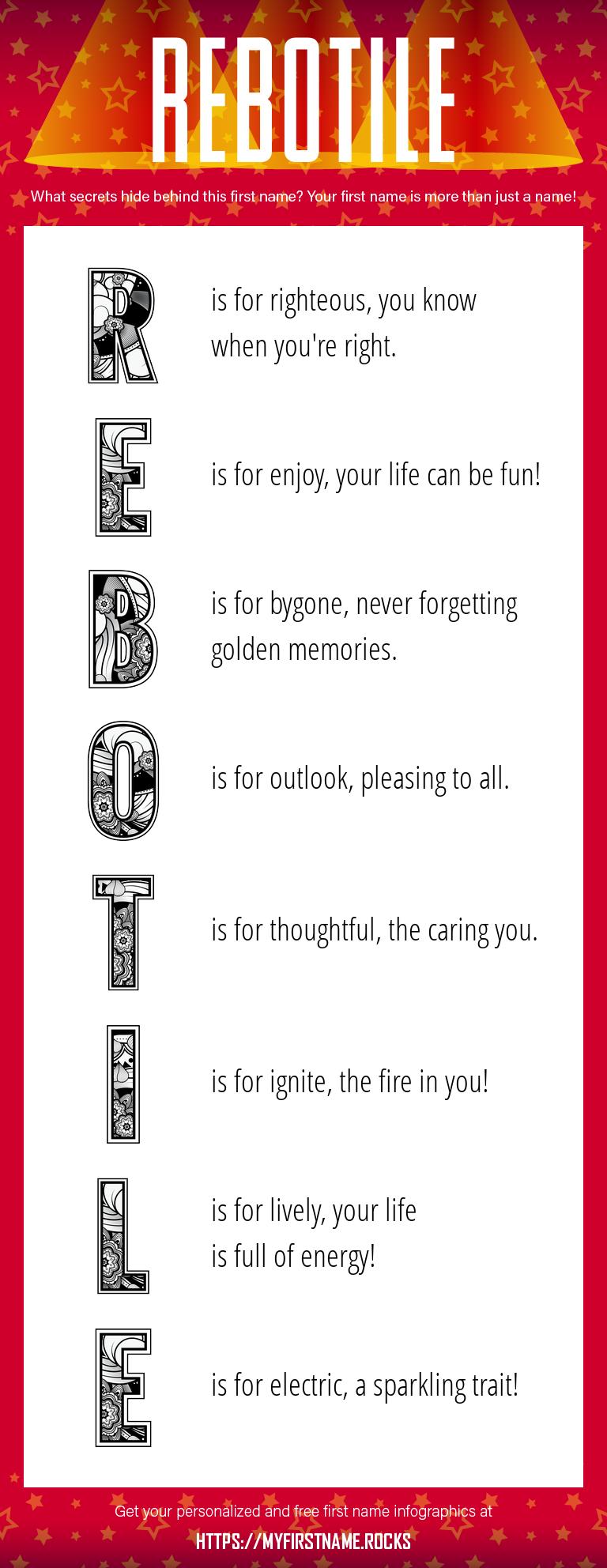 Rebotile Infographics
