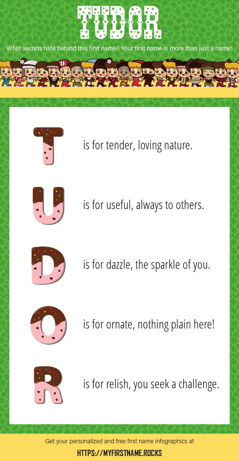 Tudor Infographics