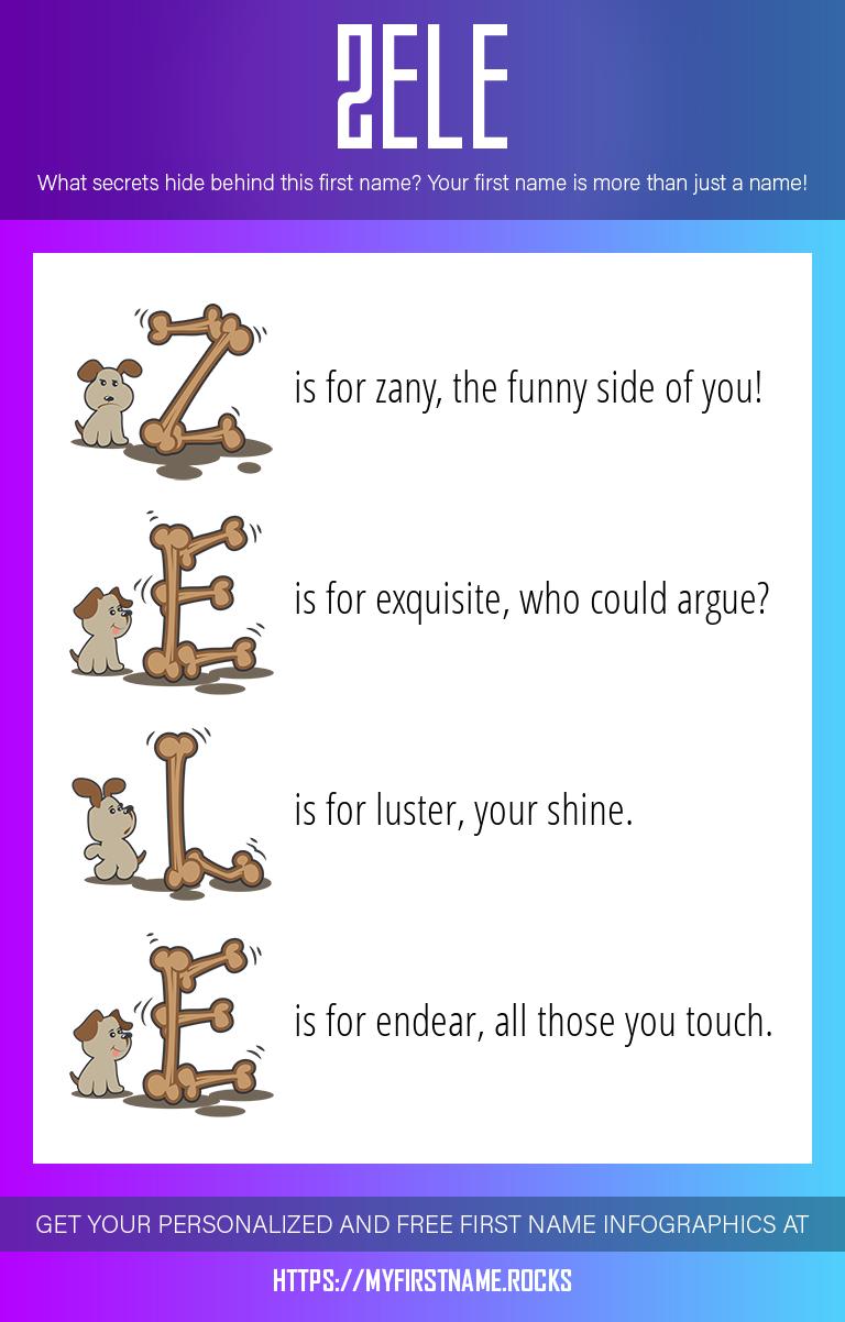 Zele Infographics