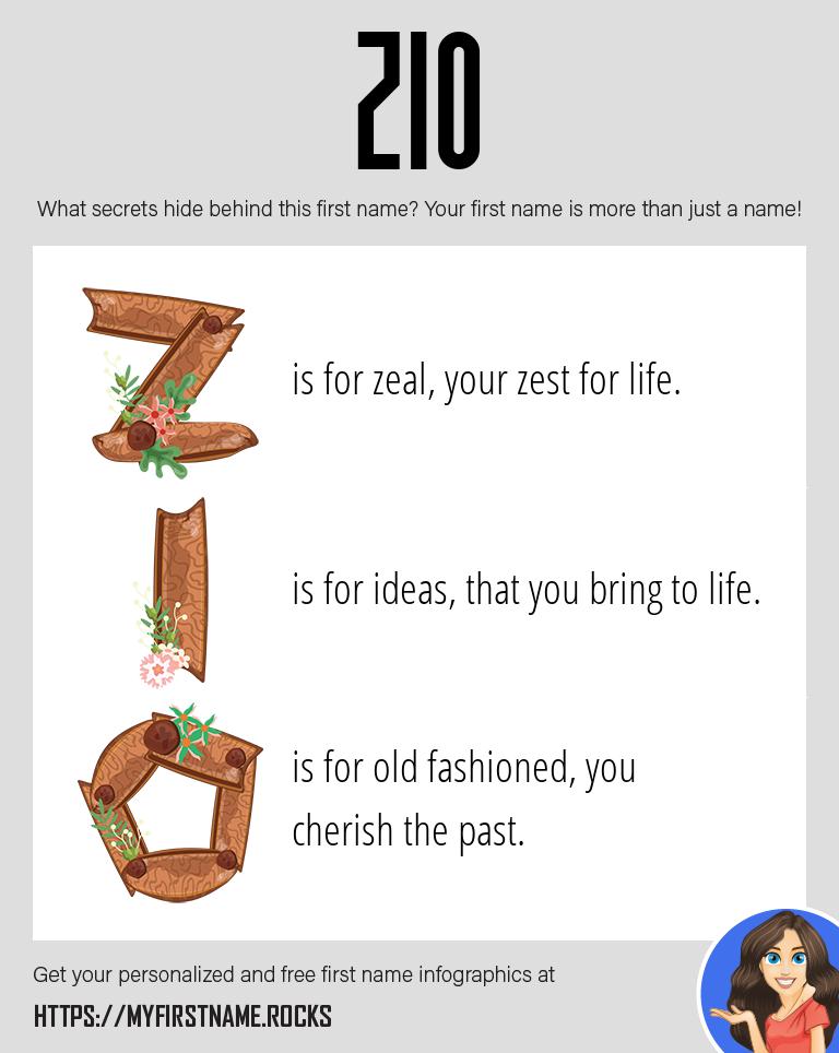 Zio Infographics